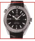 Omega Seamaster 222.18.42.20.01.001
