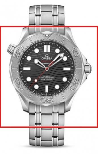Omega Seamaster 210.30.42.20.01.002